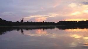 brasile amazzonia
